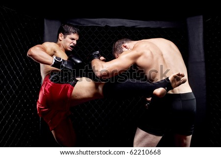 Mixed martial artists fighting - kicking - stock photo