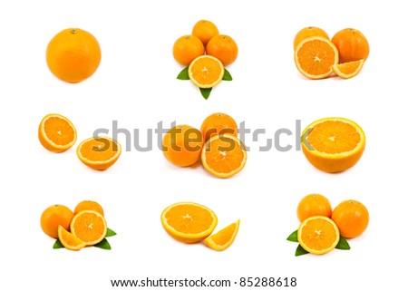 mixed of orange isolated on white background - stock photo