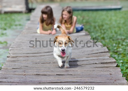 Mixed race dog with tongue out in the forefront and two girls in background - stock photo