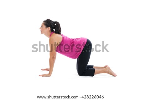 Mixed race Hispanic woman seven months pregnant doing yoga cow pose on hands and knees isolated on white