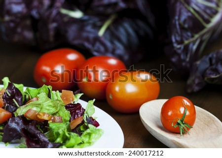 Mixed salad with red chicory and tomato - stock photo