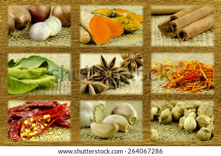 Mixed Spices. Most Popular Spices Use in Thai and Indian Food. - stock photo