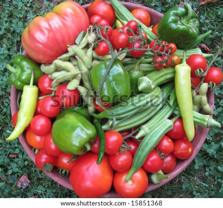 Mixed Vegetables - stock photo