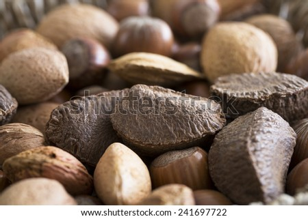 Mixed whole nuts in shell close up with Brazil nut in focus. - stock photo
