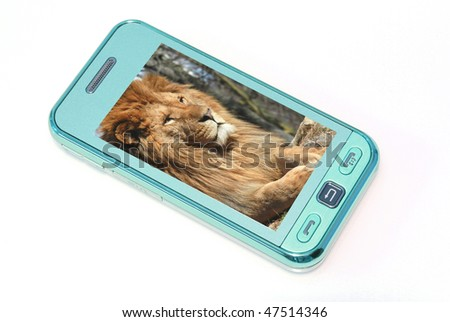 mobile phone with lion's photo - stock photo