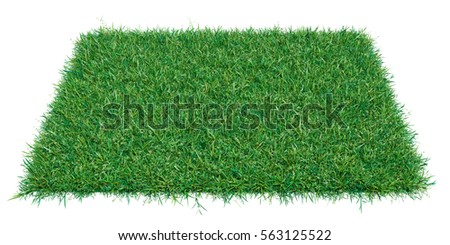 Mock-up rectangle piece of green grass. Empty space for your product or text. Template for design. 3d illustration