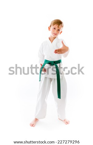 model isolated on plain background greetings hand shake - stock photo