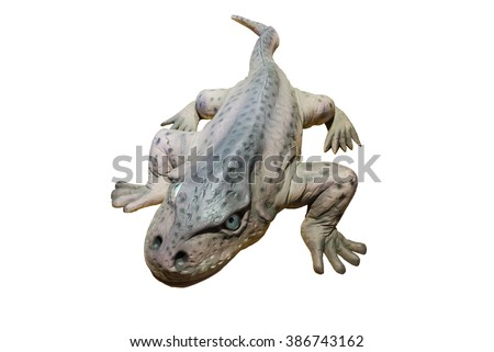 Model large-headed Eryops isolated on white background. It was a prehistoric amphibian genera lived during the early Permian and late Carboniferous Period.One of the largest land animals of their time