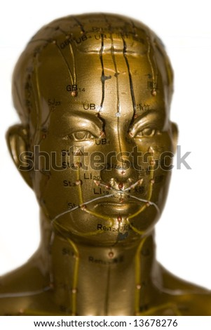 Model of human head with acupuncture points - traditional chinese medicine - stock photo