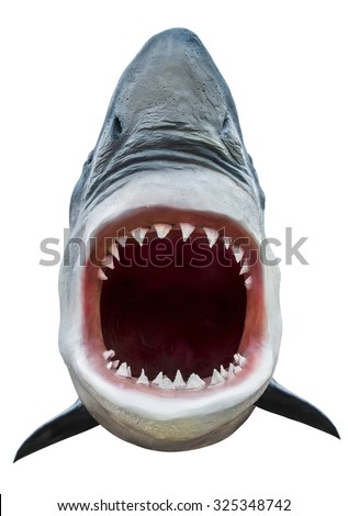 Model of shark with open mouth closeup. Isolated on white. Path included. - stock photo
