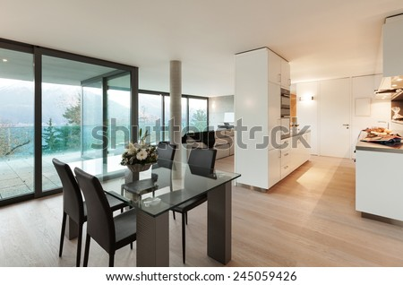 Modern apartment, domestic kitchen view from the dining room - stock photo