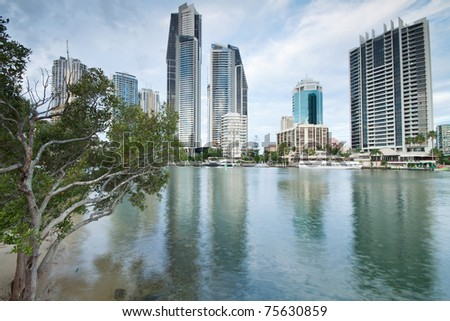 modern city during the day with tree beside (gold coast, queensland, australia) - stock photo
