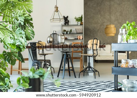 Indoor Plants Stock Images, Royalty-Free Images & Vectors ...