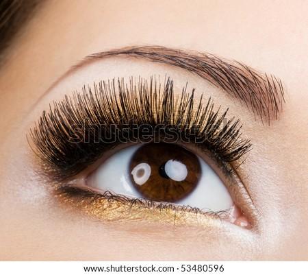 Modern fashion makeup of a female eye - macro shot - stock photo