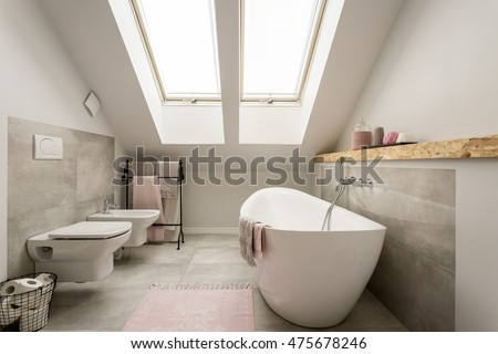 Modern grey female bathroom with pastel pink decorations