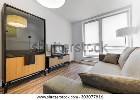 Modern interior design series: Living room - stock photo