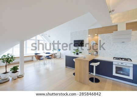 modern interior light a large apartment in mansard