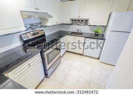 Modern kitchen in luxury house. - stock photo