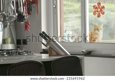 Modern kitchen interior natural stone countertop, cat plays behind the window - stock photo