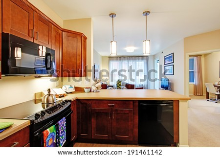 Modern kitchen room in apartment with open floor plan. View of living room