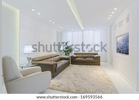 Modern Luxury Living Room - stock photo