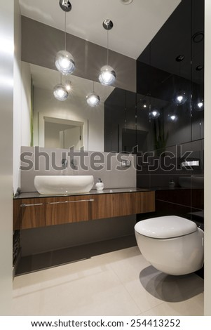 Modern luxury toilet room in black and white style - stock photo