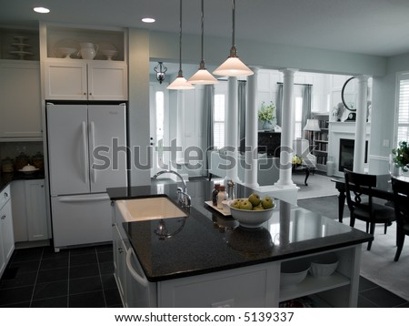 Modern open floor plan from kitchen into living room
