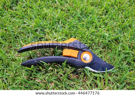 Modern secateurs on the mown lawn in the summer garden