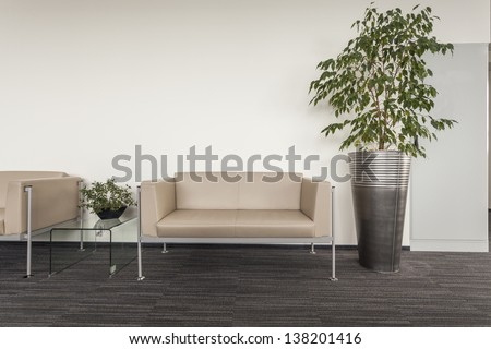 Modern sofa standing in an office hall