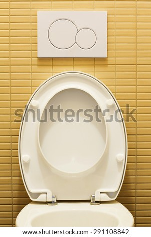 Modern toilet room with plastic flushing button - stock photo