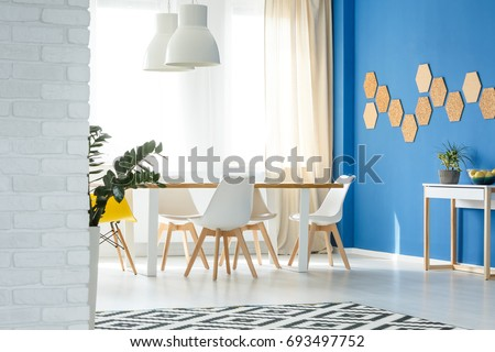Modern White Wooden Chairs In Dining Room Interior Design With Natural  Decor, Blue Wall,