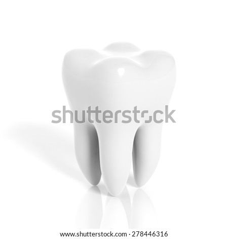 Molar tooth isolated on white background - stock photo