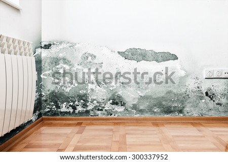 Mold and moisture buildup on wall of a modern house - stock photo