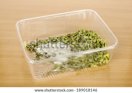 Moldy out dated product - stock photo