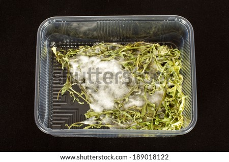 Moldy product in the plastic package - stock photo
