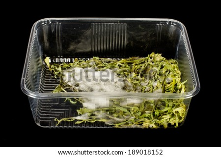 Moldy salads on the black background - stock photo