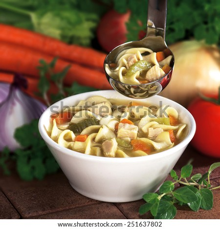 Mom's chicken noodle soup - stock photo