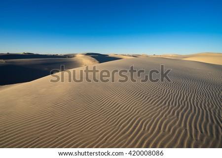 monahan sand hills desert in texas - stock photo