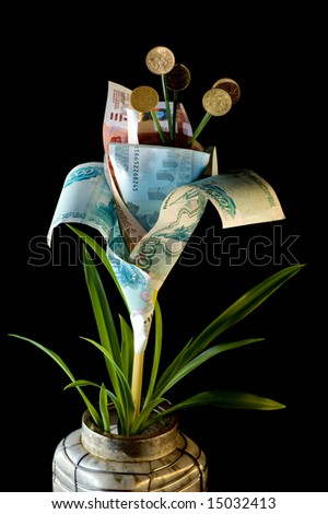 Monetary tree on a black background - stock photo