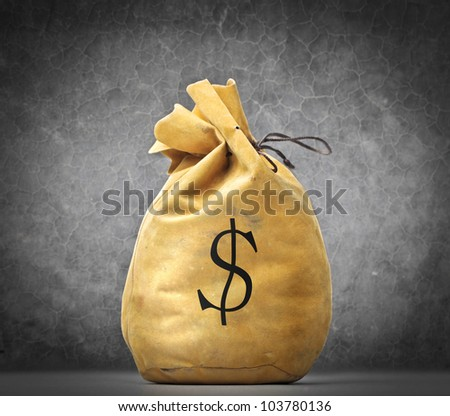 Money bag with dollar sign on it - stock photo