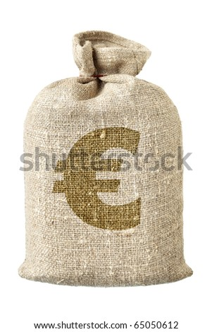 Money-bag with euro symbol isolated over the white background - stock photo