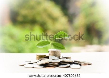 money coins,Business investment growth concept,saving concept  - stock photo