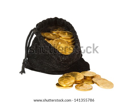 Money coins in bag isolated on white background - stock photo