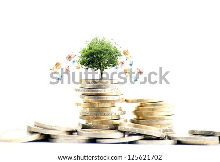 Money concept with bank notes going down a tree - stock photo