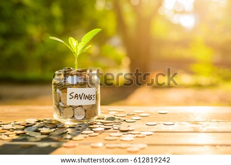 Money in glass with plant growing. Saving Concept