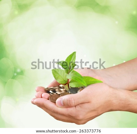 Money. Palms with a tree growing from pile of coins with green background - stock photo