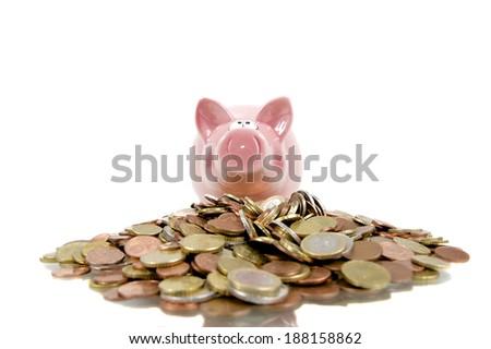 Money pig - stock photo