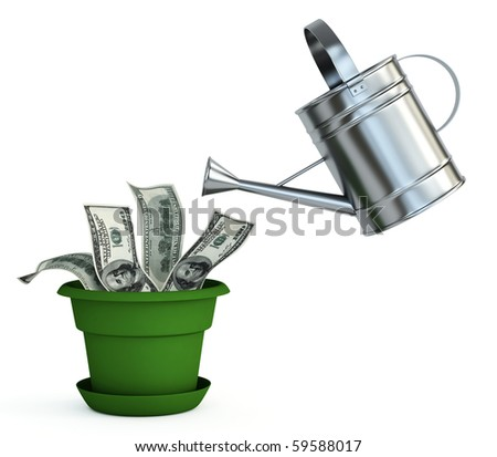 Money plant - stock photo
