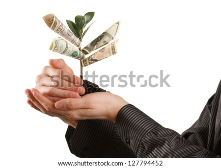 Money Tree on hand a symbol of financial success