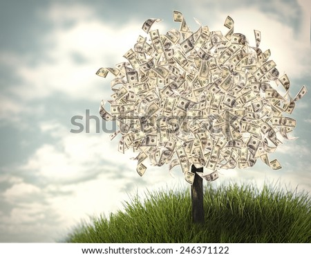 Money tree on natural background - stock photo